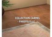 CARMEL - PAREFEUILLE