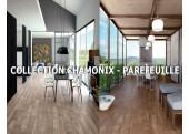 CHAMONIX - PAREFEUILLE