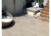 PIERRE DE BOURGOGNE - PAREFEUILLE