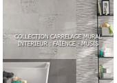 CARRELAGE MURAL INTERIEUR : FAÏENCE - MUSIS